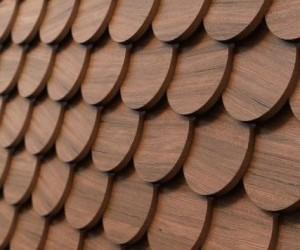 wood ring iOS 7 wallpaper
